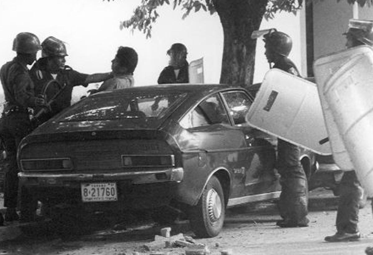 Dobermans acorralan a un manifestante