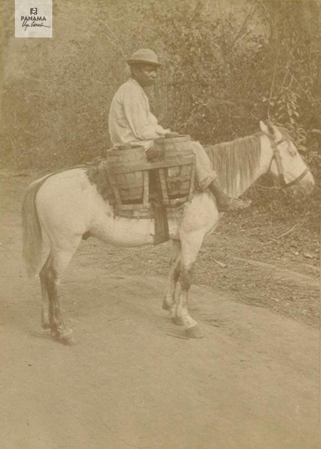 muybridge panama 1875 (54)