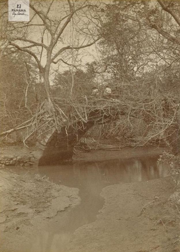 muybridge panama 1875 (57)