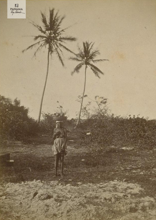 muybridge panama 1875 (69)