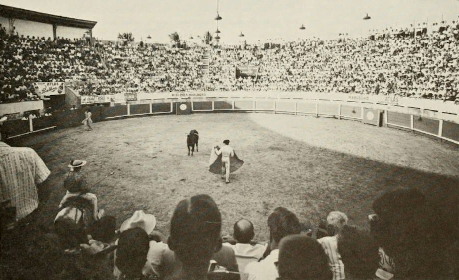 plaza toros la macarena (1)