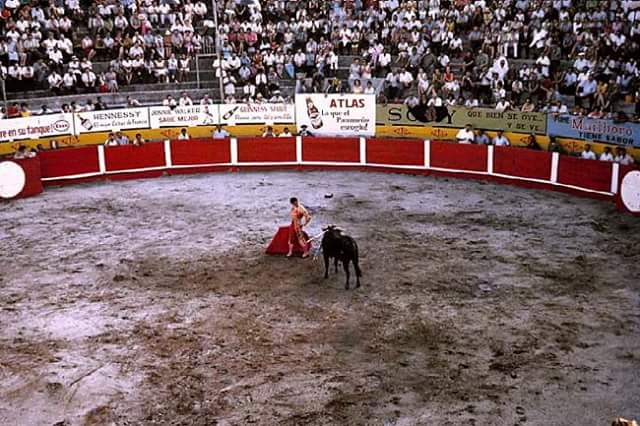 plaza toros la macarena (3)