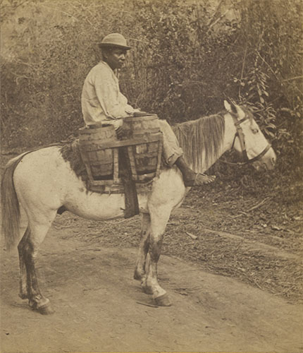 1875 Panama Water Carrier